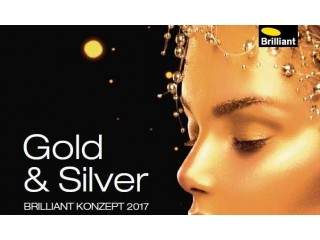 "Новинки 2017 года продолжаются! Концепт 2017 - ""Gold Silver"""