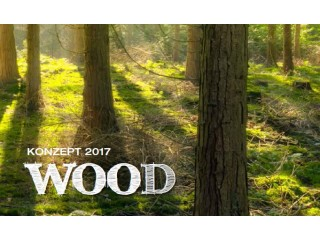 "Новинки 2017 года продолжаются! Концепт 2017 - ""Wood"""